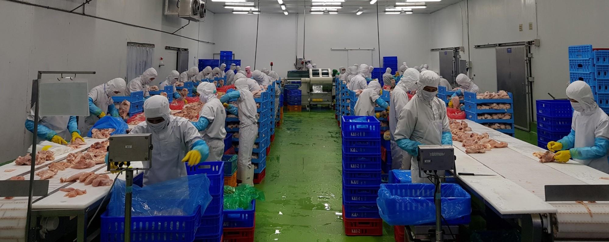 sản xuất sản phẩm thịt gà theo yêu cầu